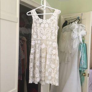 Beautiful Lace Shell Dress